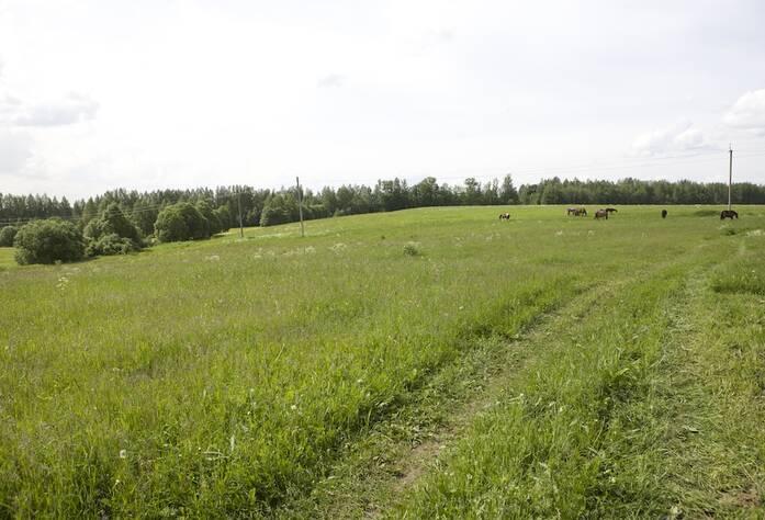 Место строительства ЖК «Yolkki Village»